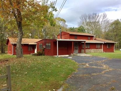 248 New Rd  Montague Township, NJ MLS# 3425462