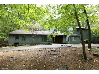 61 Frog Hollow Rd  Tewksbury Township, NJ MLS# 3427926