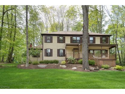 4 Blue Fern Ln  Randolph, NJ MLS# 3428514