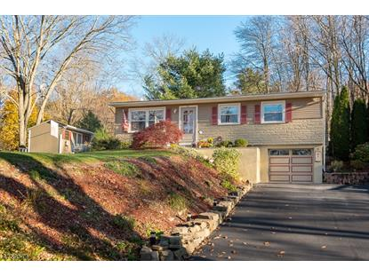 64 Ridgeway Ave , Hope Twp, NJ