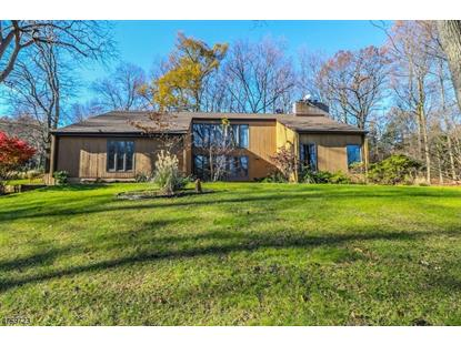 99 Country Acres Dr , Union Twp., NJ