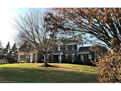 13 Cedar Tree Ln , Chester, NJ