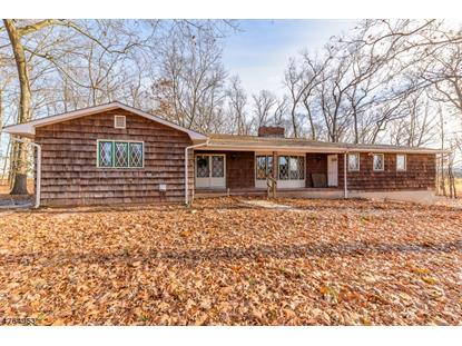 2327 S Branch Rd  Branchburg, NJ MLS# 3435295