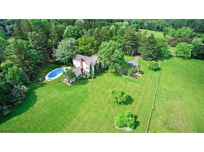 16 Horseshoe Bend Rd , Mendham, NJ