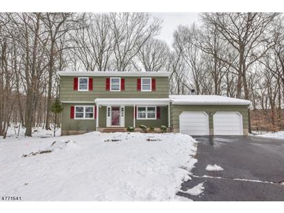 18 Redwood Ln , Ringwood, NJ