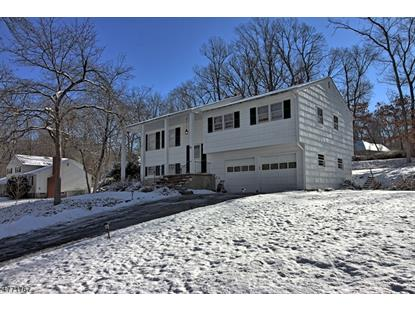41 Forest Dr , Long Hill Twp, NJ