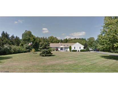 119 Rockafellow's Mill Rd , Readington Twp, NJ
