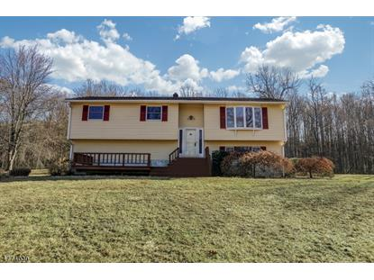 41 Long Valley Blvd , Washington Township, NJ