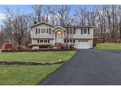 11 Ash Ct , Ringwood, NJ