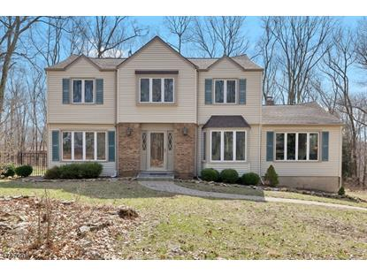16 Whiteoak Ridge Rd , Lebanon Twp, NJ