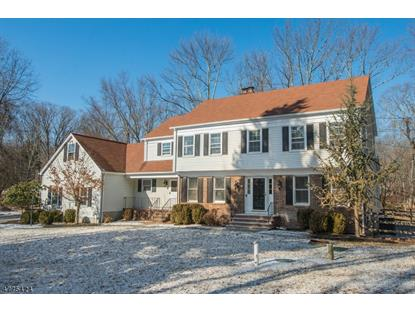 1 C SOUTH RD  Randolph, NJ MLS# 3444406