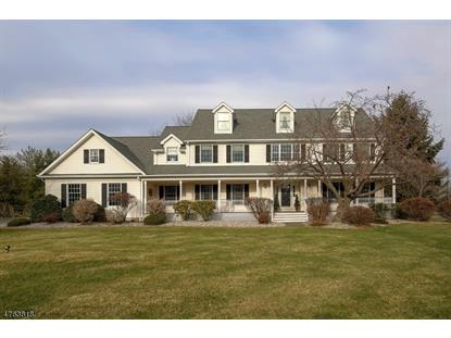 2 Quimby Ln , Readington Twp, NJ