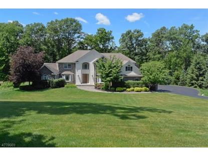 17 Windemere Way  Sparta, NJ MLS# 3447781