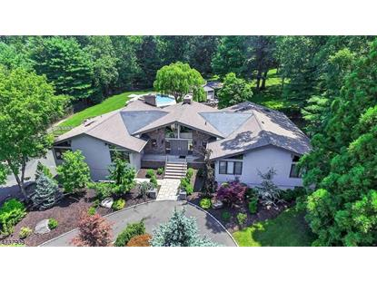 30 Snoden Ln , Watchung, NJ