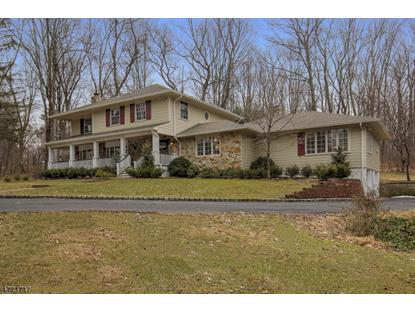 9 Townsend Rd  Mendham, NJ MLS# 3448672