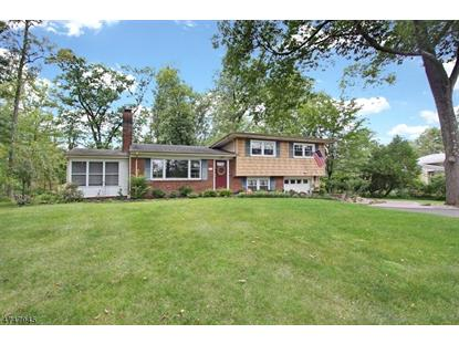 49 Morning Glory Rd  Warren, NJ MLS# 3448737
