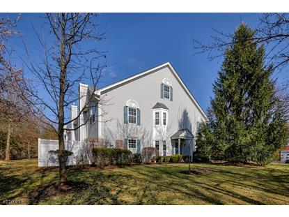 501 South Branch Drive , Readington Twp, NJ