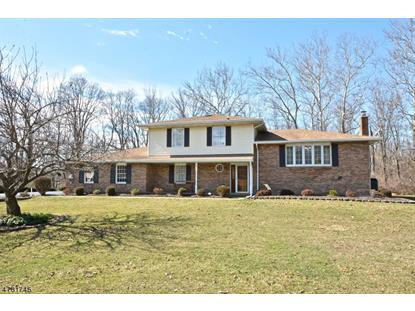 322 Lows Hollow Rd , Greenwich Township, NJ