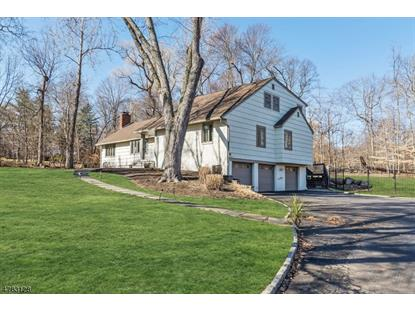 140 Fawnhill Rd , Upper Saddle River, NJ
