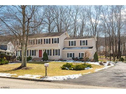 102 Meadow Brook Rd , Randolph, NJ