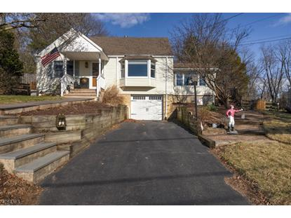 5 Brookside Pl , Readington Twp, NJ