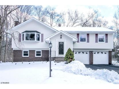 73 Queen Ct , Hillsdale, NJ