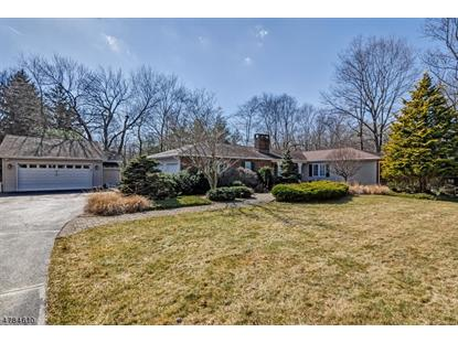 6 Farmstead Ct W , Randolph, NJ