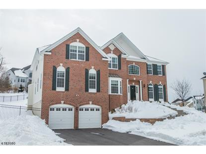 30 Elias Dr , Mount Olive, NJ