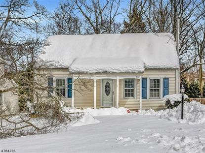 20 Cedar Ln , Chatham Twp., NJ