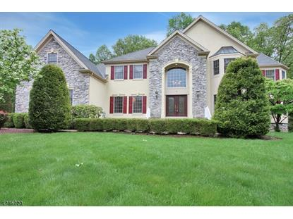 9 Orchard Way , Warren, NJ