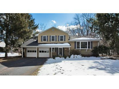 1 Mall Drive  Hillsborough, NJ MLS# 3455331