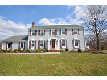 248 Old York Rd  Raritan Township, NJ MLS# 3457956