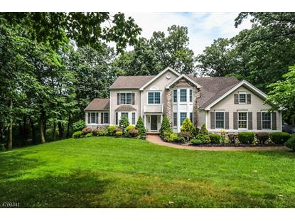 9 Carhart Ct , Union Township, NJ