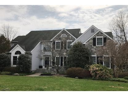 6 Poppy Dr , Hillsborough, NJ