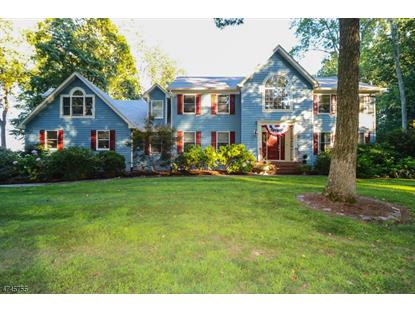 32 Harbourton Woodsville Rd , Hopewell Township, NJ