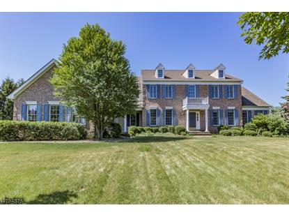 27 Starling Dr , Montgomery, NJ