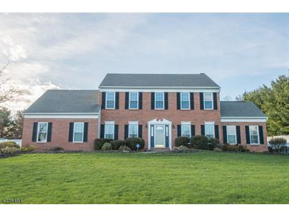 2 Tracey Ln  Mount Olive, NJ MLS# 3465194