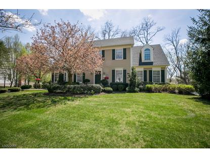 6 Trimingham Ct , Mendham, NJ