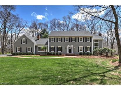 31 Big Spring Rd , Tewksbury Township, NJ