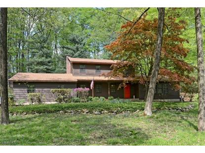 32 CHERRYVILLE HOLLOW RD , Raritan Township, NJ