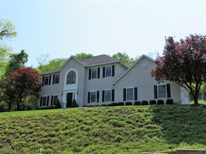 149 Good Springs Rd , Franklin Twp, NJ