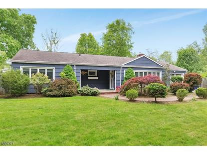 393 Mount Airy Rd  Bernards Township, NJ MLS# 3472034