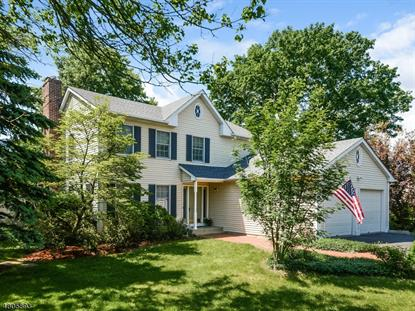 1274 Millstone River Rd , Hillsborough, NJ