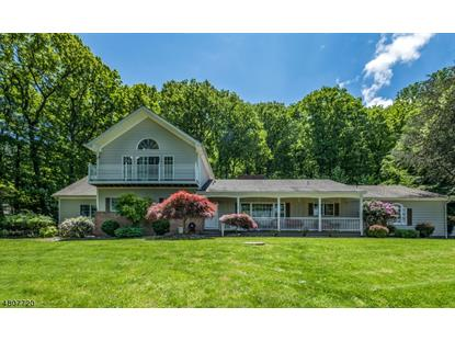 32 Spring Hill Rd  Franklin Twp, NJ MLS# 3474019