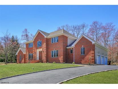 29 FAIRHAND CT , Bridgewater, NJ