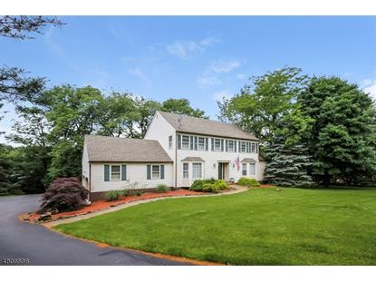 5 WILDWOOD CT  Raritan Township, NJ MLS# 3475776