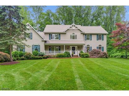 16 IRONIA RD  Mendham, NJ MLS# 3477344