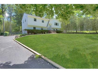 22 PINE BROOK RD  Towaco, NJ MLS# 3478652
