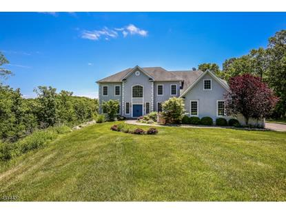 29 CROWNVIEW CT , Sparta, NJ
