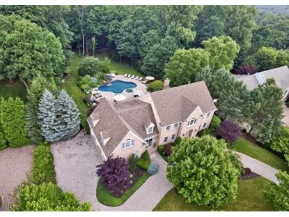 11 DE GRAAF CT  Mahwah, NJ MLS# 3482142